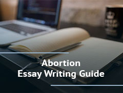 Abortion Essay Writing Guide