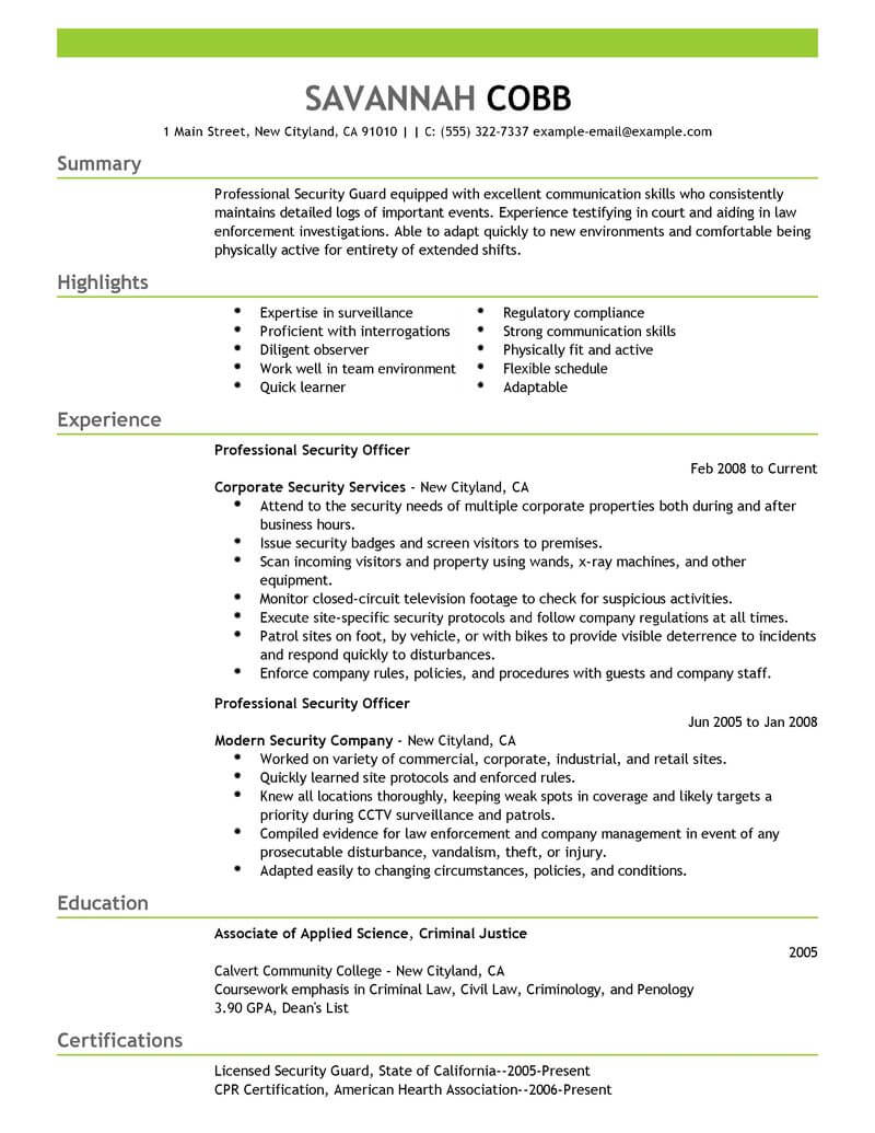 Best Professional Security Officer Resume Example From