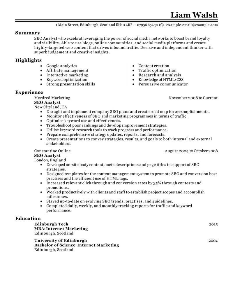 Best Seo Resume Example From Professional Resume Writing Service
